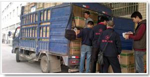 湖南第三方物流药品运输