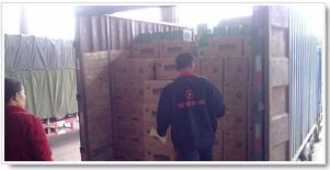 湖南纸箱货物运输