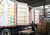 食品运输,国联物流,保质无忧
